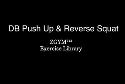 DBPushUp&ReverseSquat
