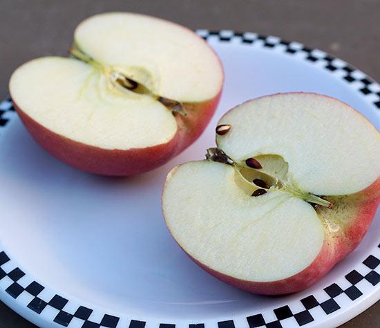 Apple_Snack_Monday